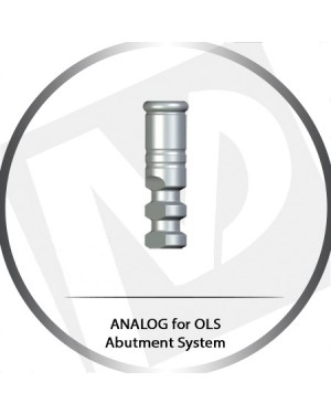 Analog for OLS Abutment System