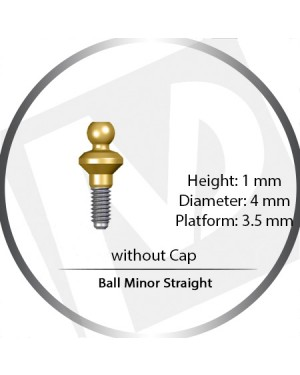 2mm x 4mm x 3.5 Platform Over Denture Ball Attachment Minor Straight – Set with Stainless Housing and Silicon Insert